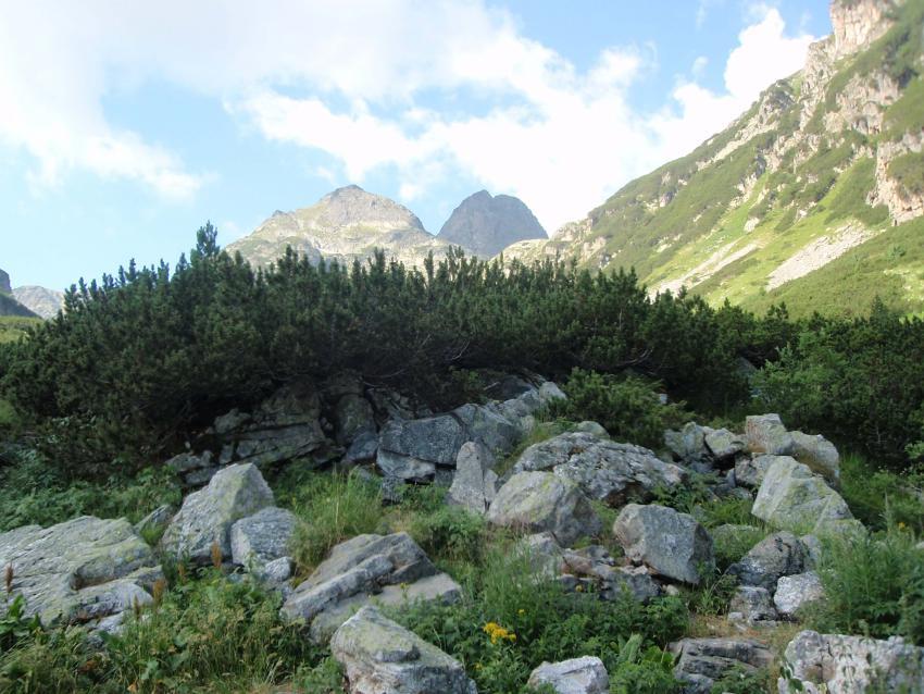 Отидете на почивка в планината за да бъдете щастливи